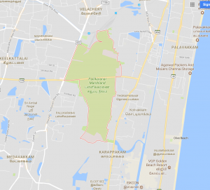 Pallikaranai Marsh, in southeastern Chennai. You can see the road that has been built through the marsh.