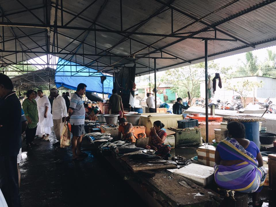 The fish market highlights how the fishing industry is the primary source of income for the local Andaman ISland community in Port Blair. Photo by Kassidy Hadley.